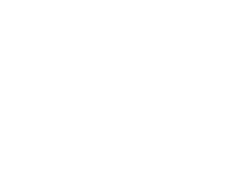 Bull Factory Prices