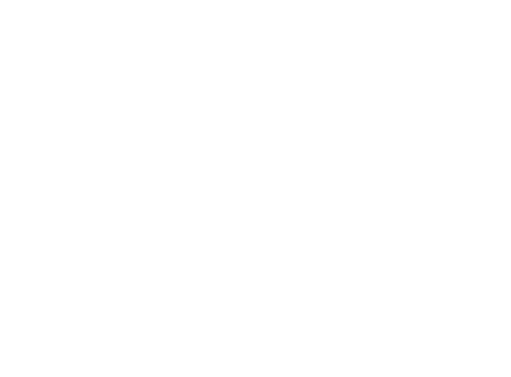 Steer Factory Prices